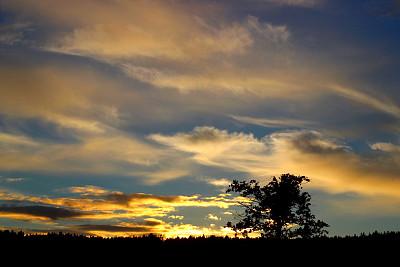 研究人员致力于确保脆弱量子态的精确解码
