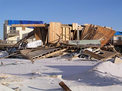 """果蝇让研究人员对""""神经细胞的高速公路""""有了新的认识"""