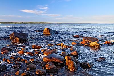 研究揭示了社交媒体上的赌博广告对儿童的强大诱惑