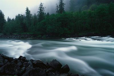 为酿酒葡萄渣寻找新生命