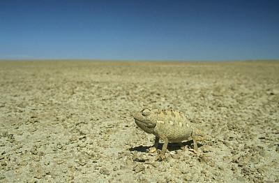 工科学生帮助联邦专家解决一个混乱的3D打印问题
