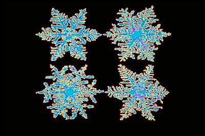 设计用于检测毒素等的新型生物传感器