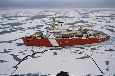 关于糖尿病的新发现可能降低器官衰竭的风险