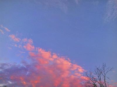 """机器人""""第三拇指""""的使用可以改变手的大脑表现"""
